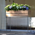Jan Kurtz Blumenkübel MINIGARDEN, 100 x 34 x 25 cm, Unikat aus recyceltem Teak,